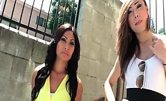 TS beauties Venus Lux and Annalise Rose