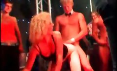 Hot Strippers Fucking Party Sluts In Big Orgy